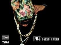 PikeBoy
