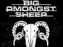 Big Amongst Sheep