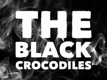 The Black Crocodiles