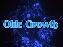 Olde Growth