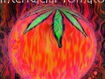 Interracial Tomatoe