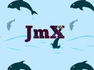 Image for JmX