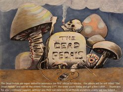 Image for THE DEAD PEDALS