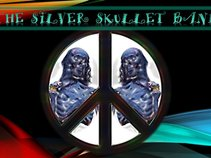 The Silver Skullet Band