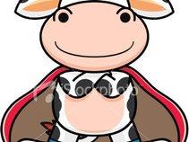 Splendido The Cow