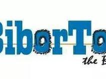 Biborton The Band