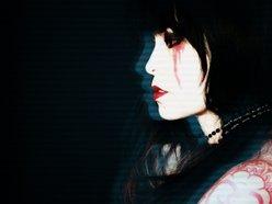 Image for SINE