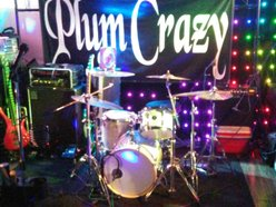 Image for Plum Crazy