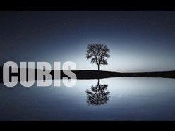 Steve Cubis