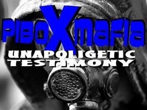 Pi Box Mafia