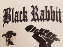 Black Rabbit