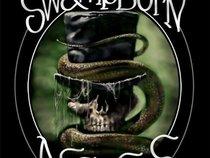 The Swamp Born Assassins