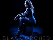 Black Orchid Music