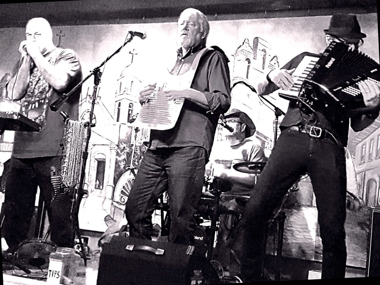 Image for The Zydeco Slim Band
