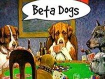 Brian Jablo (Betadogs)