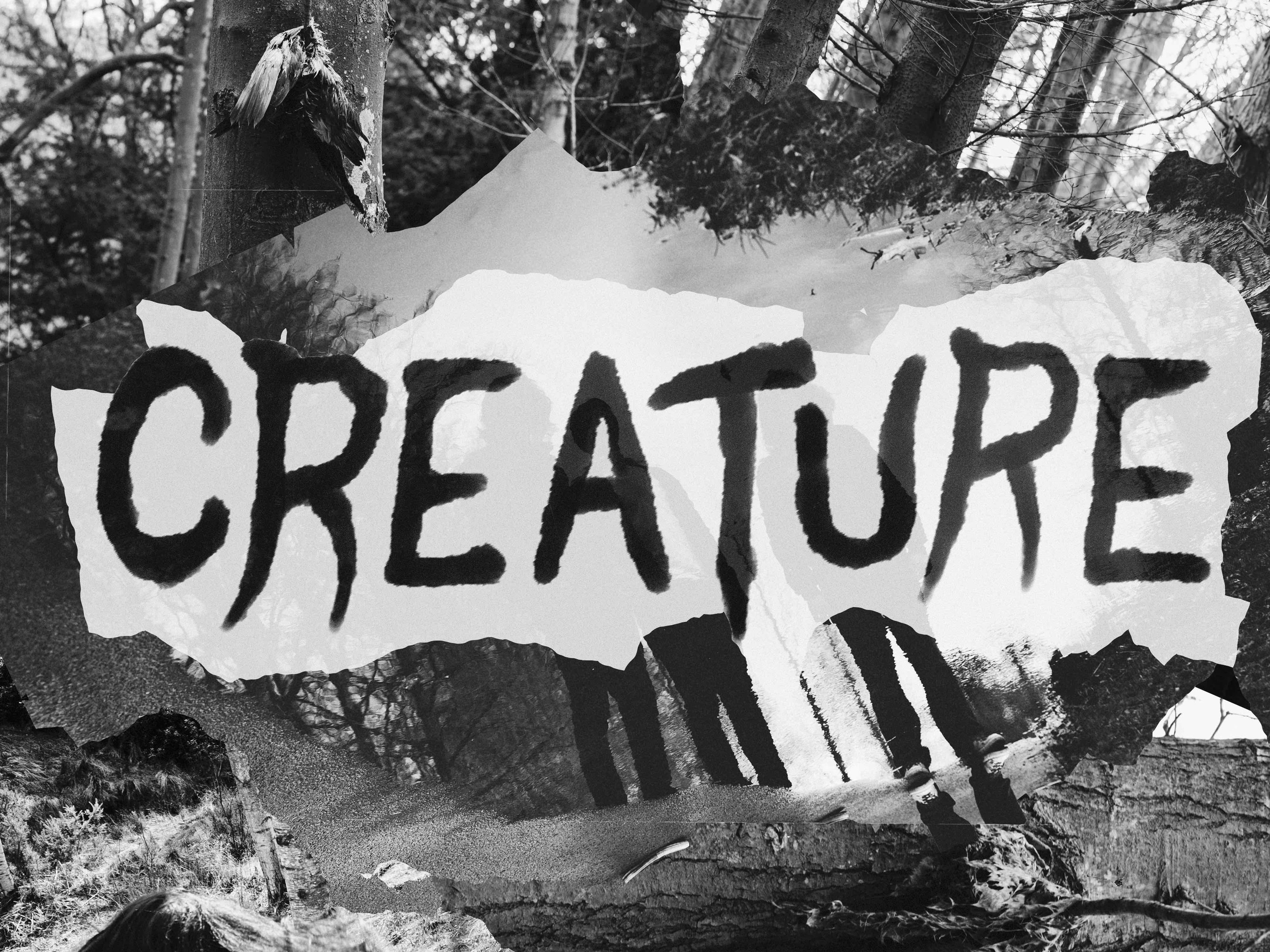 Image for Creature