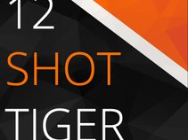 12 Shot Tiger