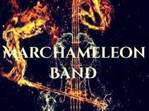 MarChameleon  Band