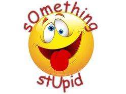 Image for Something Stupid