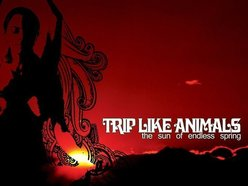Image for Trip Like Animals