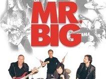 Mr. Big Fan Page