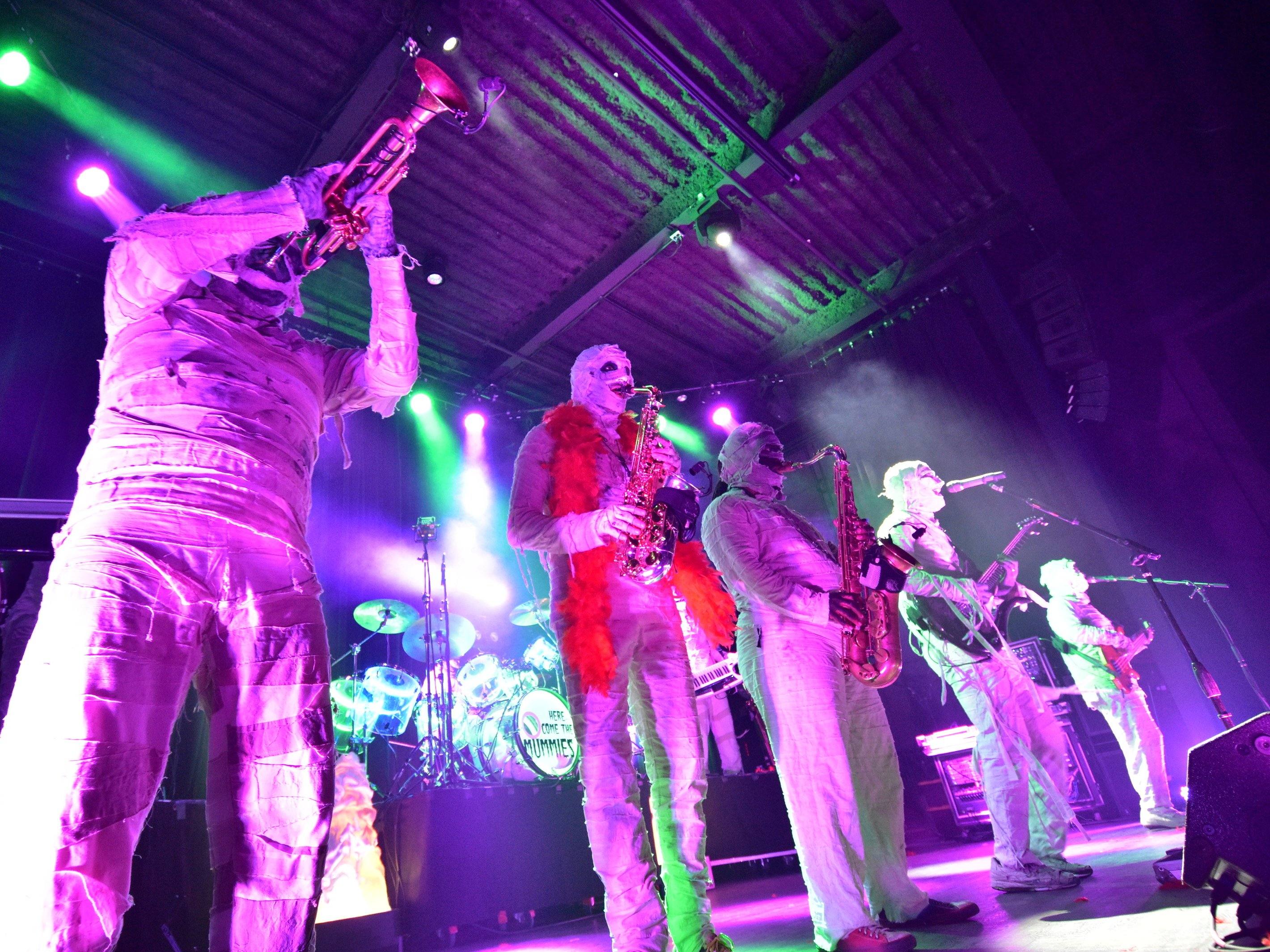 Image for Here Come The Mummies
