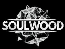 Image for Soulwood