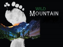 Image for Wild Mountain