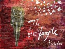 The Antifragile