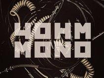 4 OHM MONO