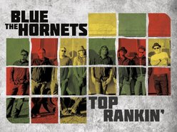 Image for The Blue Hornets