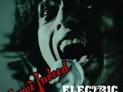 Image for Electric Eel Shock