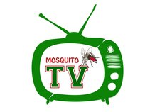TV MOSQUITO