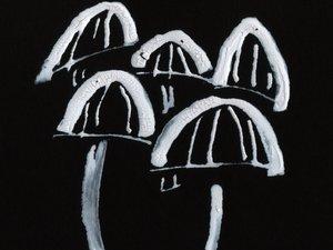 Bloodless Mushroom