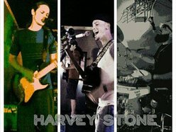 Image for Harvey Stone