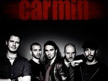 Groupe CARMiN