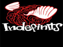Image for Indefinits