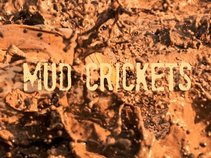 Mud Crickets