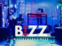 Seeryus Business