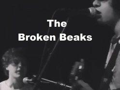 Image for The Broken Beaks