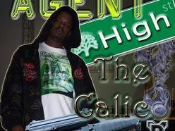 Image for Agent High The Calico