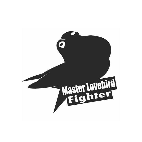 Unduh 840+ Foto Gambar Burung Love Bird Mp3 HD