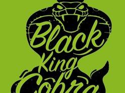 Image for Black King Cobra