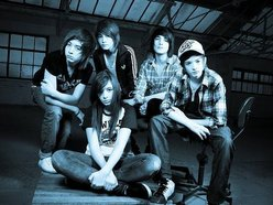 Image for The Marmozets