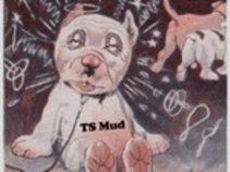 TS Mud