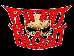 Image for Putrid Blood