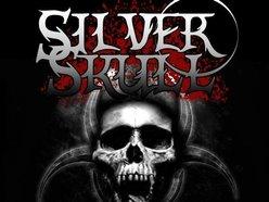 Image for Silver Skull