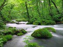 """""""Wellness River"""""""