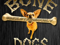 Image for Bone Dogs