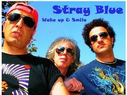 Image for Strayblue